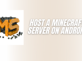 Host a Minecraft Server on Android